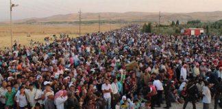 Φ- Αποθήκη ψυχών η Ελλάδα για να βοηθηθεί η Μέρκελ!, Νεφέλη Λυγερού