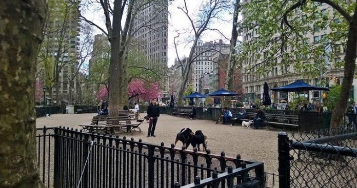 Νέα Υόρκη: Ξυπνώντας στην πόλη που δεν κοιμάται ποτέ, Νεφέλη Λυγερού