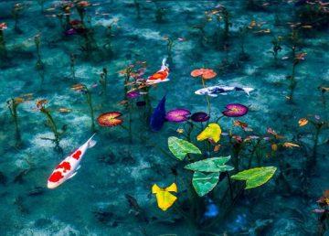 Αυτή η λίμνη στην Ιαπωνία μοιάζει με πίνακα του Μονέ