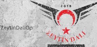 Στη μάχη του Αφρίν και η ψηφιακή στρατιά της Τουρκίας, Ιωάννα Ηλιάδη