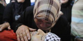 To παλαιστινιακό δεν παρακάμπτεται, Κώστας Ράπτης