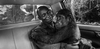 Φωτογράφοι υπέρ της προστασίας της άγριας φύσης