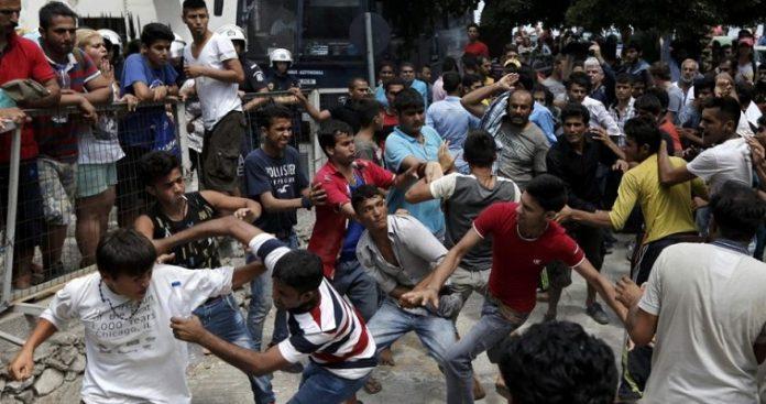 Συμμορίες οπλισμένων παράνομων μεταναστών..., Νεφέλη Λυγερού