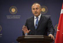 Κράτος-Φρανκεστάιν που επιδιώκει η Τουρκία, Κώστας Βενιζέλος