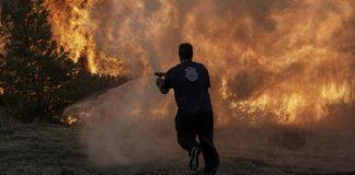 Τι κι αν ανήκουμε στη Δύση, η Ελλάδα μαρτυράει, Θεόδωρος Ράκκας