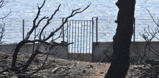 Καταπατημένη δημόσια έκταση το οικόπεδο του θανάτου στο Μάτι