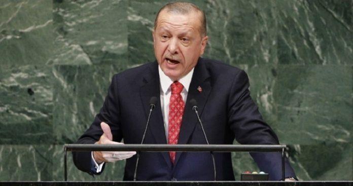 Σε κράτος-παρία μετατρέπει σταδιακά ο Ερντογάν την Τουρκία, Νεφέλη Λυγερού