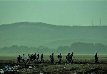 Και τζιχαντιστές στις μεταναστευτικές ροές από τον Έβρο, Νεφέλη Λυγερού