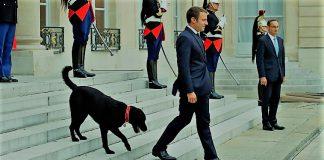 Γιατί οι σύμβουλοι του Μακρόν εγκαταλείπουν το προεδρικό μέγαρο, Κώστας Ράπτης