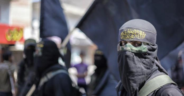 Χώρα τράνζιτ για τζιχαντιστές η Ελλάδα, Νεφέλη Λυγερού