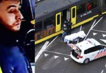 Από τη Νέα Ζηλανδία στην Ουτρέχτη - Το αλληλοτροφοδοτούμενο δίπολο, Σταύρος Λυγερός