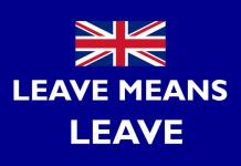 Ευρωεκλογές: Η άκρα δεξιά να ευχαριστήσει την «αριστερά της σαμπάνιας», Άρης Χατζηστεφάνου
