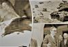 Το αποκαλυπτικό τηλεγράφημα του Αμερικανού πρέσβη για τους Τούρκους πριν σφαγιαστεί...,Κώστας Βενιζέλος