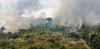 """Βραζιλία: Με """"γενοκτονία"""" απειλούνται οι ιθαγενείς στον Αμαζόνιο"""