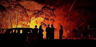 Ο Χατζηδάκης και οι πυρκαγιές στην Αυστραλία, Σωτήρης Καμενόπουλος