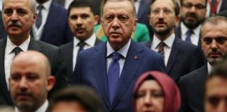 Η σκυτάλη στα χέρια της διπλωματίας στο ελληνοτουρκικό μέτωπο, Νεφέλη Λυγερού