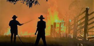 Να γιατί σε αφορά Έλληνα το οικολογικό δράμα Αυστραλία, Δημήτρης Μαυράκης