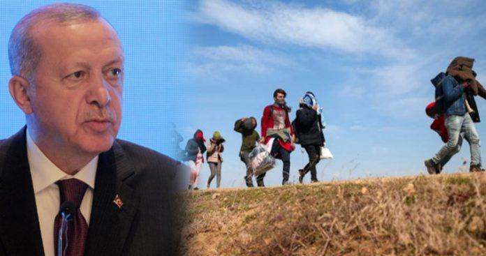 Ρώσος αναλυτής: Γιατί οι Έλληνες έπραξαν υποδειγματικά στον Έβρο – Στα αζήτητα η