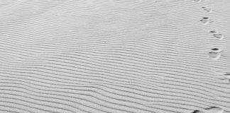 Βία και Πολιτισμός – «Οδοιπόρε, ο δρόμος σου είναι τα βήματά σου», Γιάγκος Ανδρεάδης