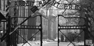 Προσοχή κίνδυνος: Η γερμανική μοναδικότητα ξαναχτυπά, Πέτρος Πιζάνιας