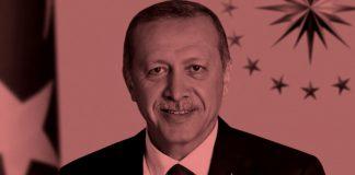 Ο ιδεολογικός πυρήνας και τα πολιτικά πρόσωπα του Ερντογάν, Νεφέλη Λυγερού