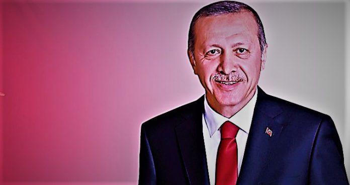 Quo Vadis Recep Tayyip Erdogan, Theodors Stathis