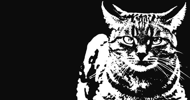 Ο γάτος του Κασιμάτη, η Ginsburg και το χούι του Κυριάκου, Μυρένα Σερβιτζόγλου