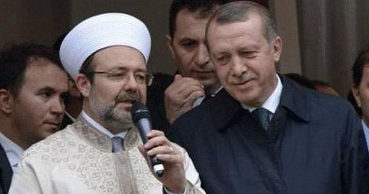 DIYANET: Ο δούρειος ίππος του Ερντογάν στην Ευρώπη, Νεφέλη Λυγερού