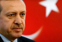 Στάχτη στα μάτια της ΕΕ η επίθεση φιλίας του Ερντογάν, Αντωνία Δήμου