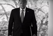Πίσω ολοταχώς οι ΗΠΑ – Από τον λαϊκισμό του Τραμπ στον σταλινισμό των social media, Δημήτρης Ελέας